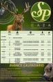 Icon of Avance Temporada 19/20 SpCaza