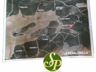 """Montería """"Las Peralosillas"""" 07/02/2018"""