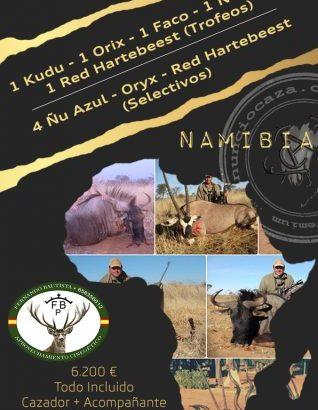 Safari Nambia