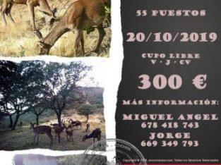 Montería La Canaleja 20 octubre