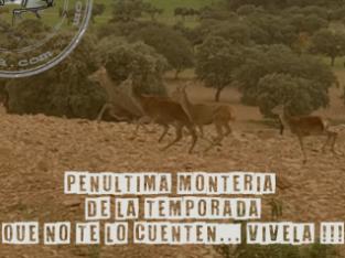 Montería Finca «Alcolehuela» 08/02/2020