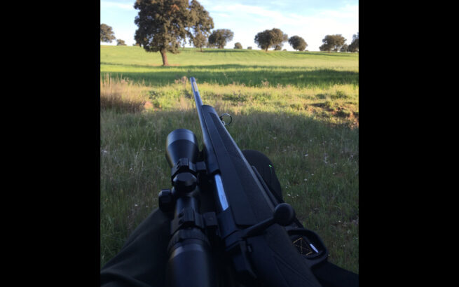 Browning abolt 270win